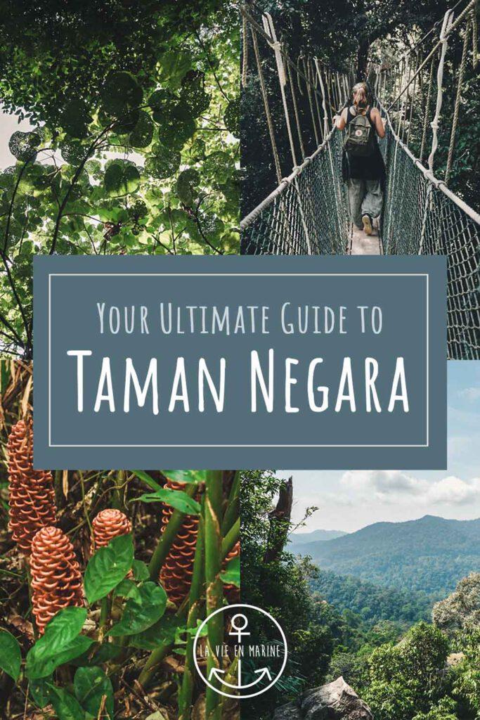 Your Ultimate Guide to Taman Negara - La Vie En Marine