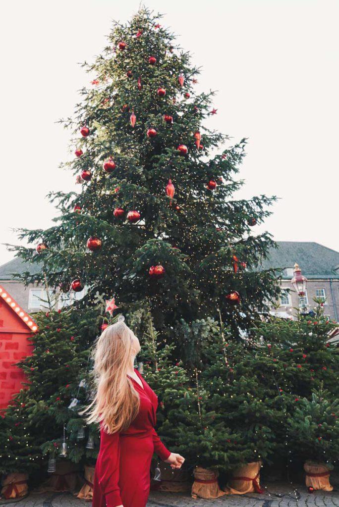 La Vie En Marine in front of the Christmas tree at Rathausplatz, Düsseldorf