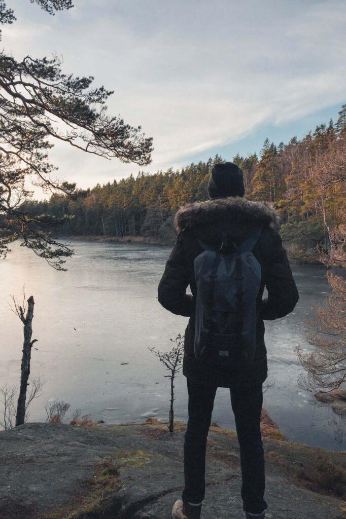 hiking a scandinavian forest